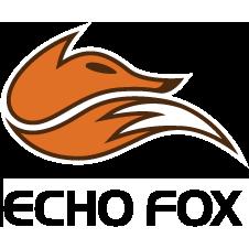 """Résultat de recherche d'images pour """"echo fox logo"""""""