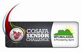 2008 COSAFA Cup