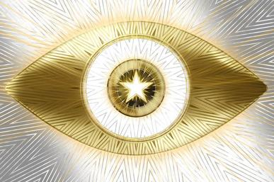 Big Brother Celebrity schedule: USA Season 2 examination