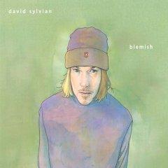<i>Blemish</i> (album) 2003 studio album by David Sylvian