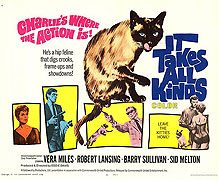 <i>It Takes All Kinds</i> (film) 1969 film by Eddie Davis