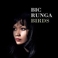 <i>Birds</i> (Bic Runga album) 2005 studio album by Bic Runga