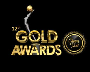 Gold Awards Main Event (2019) 720p HDRip Hindi Full Awards Show 700MB