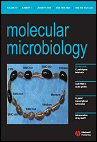 Molecular Microbiology (journal).jpg