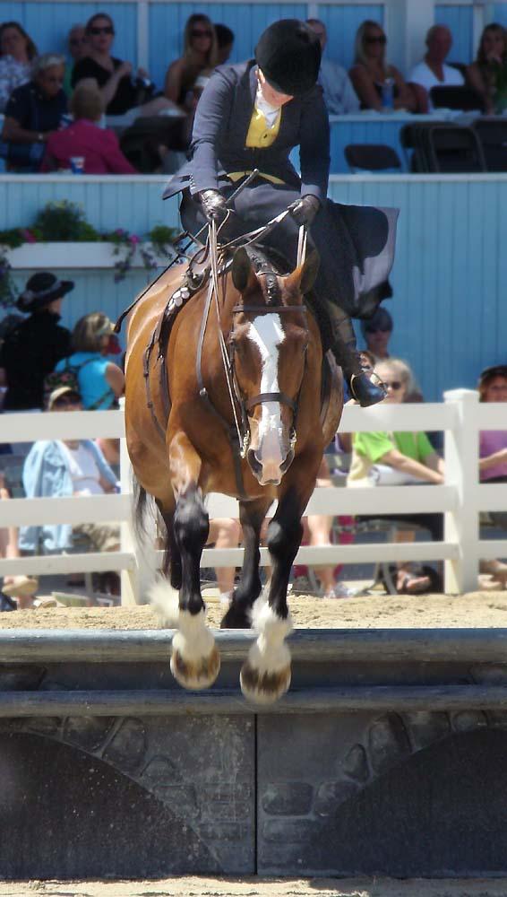 The Side Saddle Association