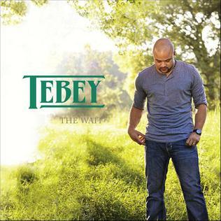 <i>The Wait</i> (Tebey album) 2012 studio album by Tebey
