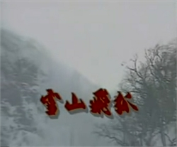 <i>The Flying Fox of Snowy Mountain</i> (1991 TV series) Taiwanese television series