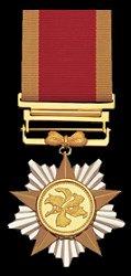 Grand Bauhinia Medal