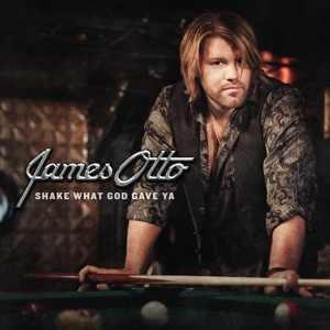 <i>Shake What God Gave Ya</i> 2010 studio album by James Otto