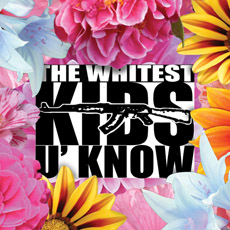<i>The Whitest Kids U Know</i> (album) album