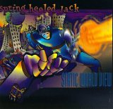 <i>Static World View</i> album by Spring Heeled Jack U.S.A.