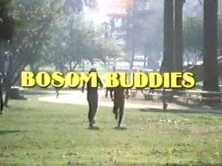 <i>Bosom Buddies</i> American sitcom