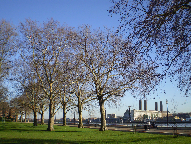 Island Gardens - Wikipedia