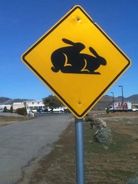 Moonlite_BunnyRanch_warning_sign.jpg