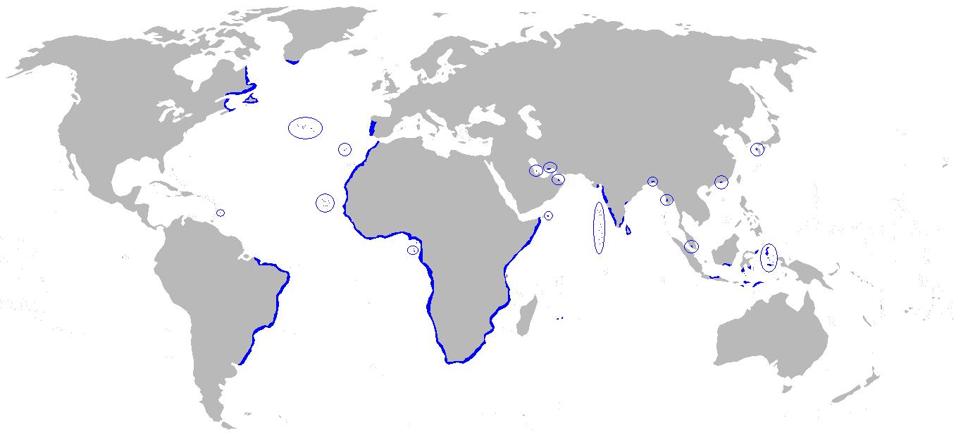http://upload.wikimedia.org/wikipedia/en/f/f7/Portuguese_empire.png