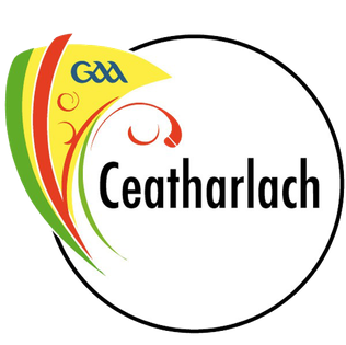 Image result for carlow gaa