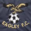 Eagley F.C. Association football club in England