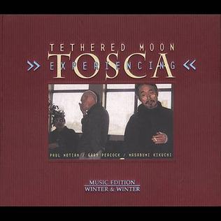 <i>Experiencing Tosca</i> 2004 studio album by Masabumi Kikuchi, Gary Peacock & Paul Motian