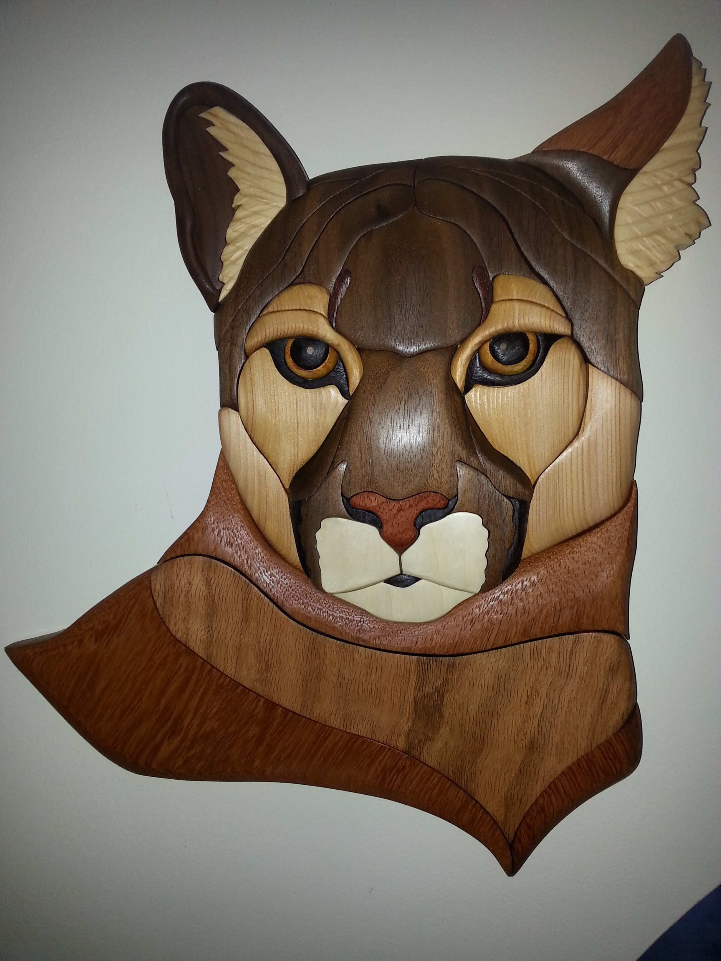 File Cougar Example Of Modern Intarsia Jpg Wikipedia