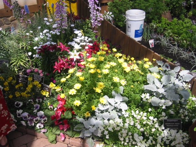 When things keep getting worse, plant seeds to grow your garden