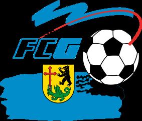 FC Gossau Association football club