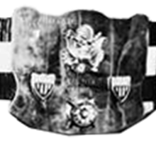 NWA United States Tag Team Championship <i>(Mid-America version)</i> Professional wrestling tag team championship