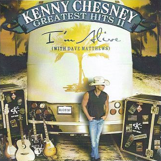 Kenny Chesney Song About Painting Room Red And Green