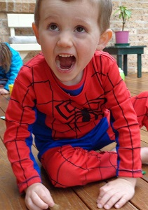 Disappearance of William Tyrrell - Wikipedia