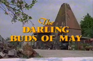 <i>The Darling Buds of May</i> (TV series) 1991–1993 TV series based on the novel