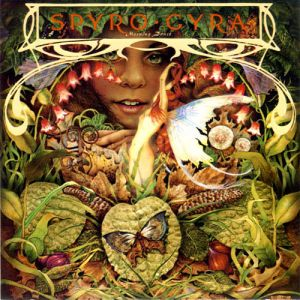 <i>Morning Dance</i> 1979 studio album by Spyro Gyra