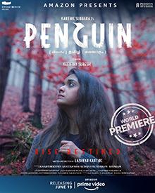 Pinguin Filme