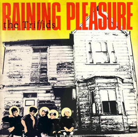 Raining Pleasure (EP)