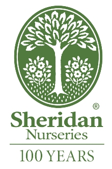 Sheridan Nurseries Wikipedia