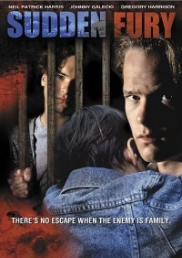 Sudden Fury DVD cover.jpg