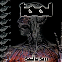 "Cover for the promotional single of ""Schism""."