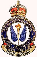 "Crest of 1 Flying Training School, Royal Australian Air Force, featuring blue wings surrounding a flaming torch, and the motto ""Cogito ergo sum"""