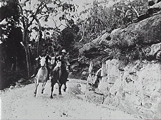 <i>Captain Midnight, the Bush King</i> 1911 film by Alfred Rolfe
