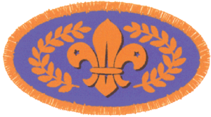 Beaver Scouts (The Scout Association) - Chief Scout's Bronze Award