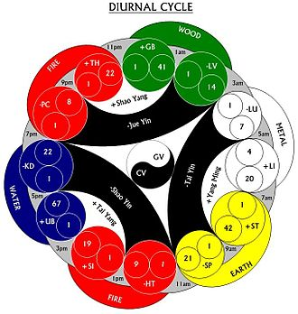 Wu Xing - Five Chinese Elements - Diurnal Cycle