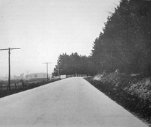 """A black and white photo of a cement roadway taken from its centre. To the left of the roadway are telephone poles; a cleared field is visible on the left. To the right of the roadway is a row of mature evergreen trees. There is no traffic in the image"""