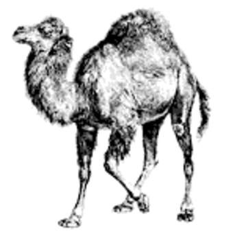 Perl - The Camel symbol used by O'Reilly Media