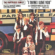 The Partridge Family - I Think I Love You.jpg
