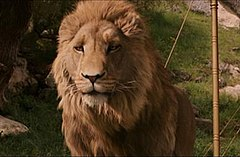 aslan  aslan in the 2005 film the chronicles of narnia the lion the witch and the wardrobe voiced by liam neeson