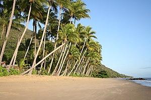 Ellis Beach, Queensland - Image: Ellisbeach beach
