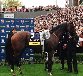 Frankel (horse) - Frankel in the winners' enclosure at Ascot after winning his final race, the Champion Stakes