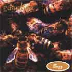 Buzz (Guardian album) - Image: Guardian b 3