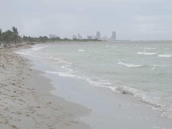 Key Biscayne Crandon Park beach
