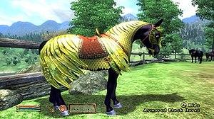 Development of The Elder Scrolls IV: Oblivion - Image: Oblivion—Horse Armor