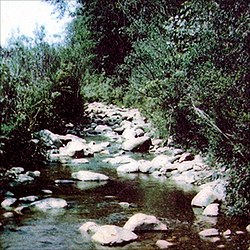 Oriskany creek.jpg