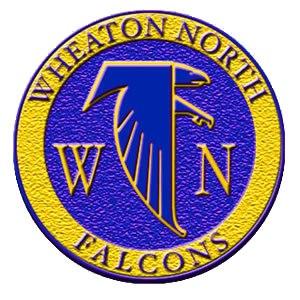 Wheaton North High School - Image: WNHS Sphere